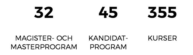 MIUN har 32 magister- och masterprogram, 45 kandidatprogram och 355 kurser